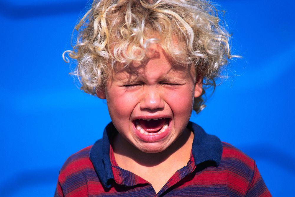 Što kada vaše dijete vrišti – sve o temper tantrumima, Maja Petković i Mihaela Richter